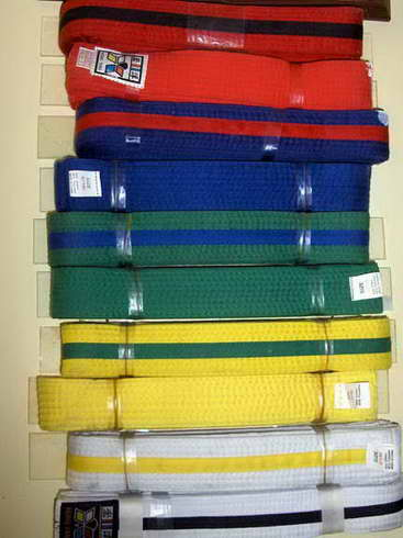 Brother's TaeKwonDo Belt System