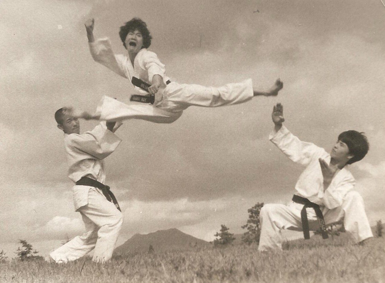 hapkido traditions philosophy technique pdf